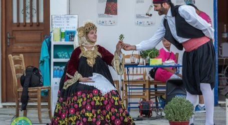 Γλέντι στην Κριθαριά, Αναβίωση Σκοπελίτικου γάμου και παραδοσιακά χορευτικά στη Μαγνησία