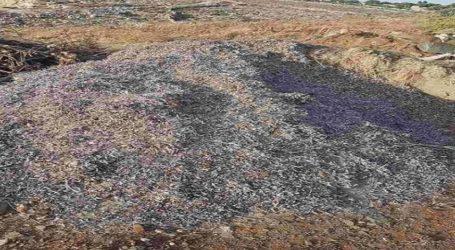 Μαγνησία: Για μόλυνση του περιβάλλοντος συνελήφθησαν τέσσερα άτομα