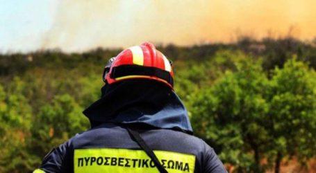 Μεγάλη κινητοποίηση της Πυροσβεστικής για φωτιά που μαίνεται στον Πυργετό