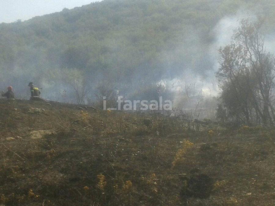 Υπό μερικό έλεγχο η φωτιά στον Παλαιόμυλο Φαρσάλων