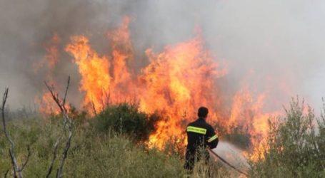 Αυξημένος κίνδυνος πυρκαγιάς και σήμερα στις Β. Σποράδες – Σε επιφυλακή οι υπηρεσίες