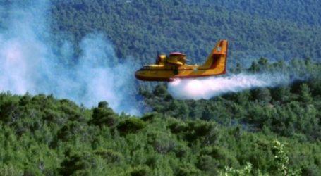 Πυρκαγιά ξέσπασε στον Αλμυρό Μαγνησίας