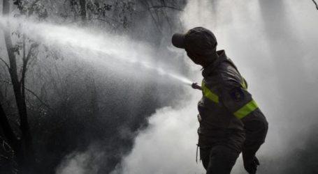 Υπό μερικό έλεγχο η πυρκαγιά στα Φάρσαλα – Στάχτη 300 στρέμματα δασικής έκτασης