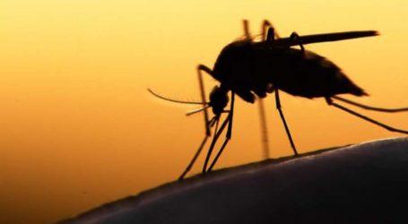 """""""Καλπάζει"""" ο ιός του Δυτικού Νείλου: Σε «καραντίνα» 4 δήμοι στην Περιφερειακή Ενότητα Λάρισας"""
