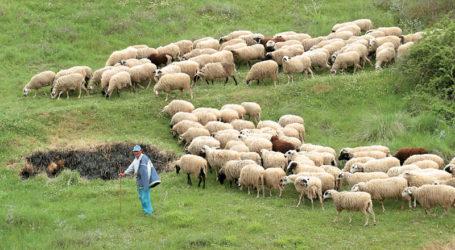 Οι αγροτοκτηνοτροφικοί σύλλογοι του Δήμου Ελασσόνας για την τροποποίηση των τελών άρδευσης