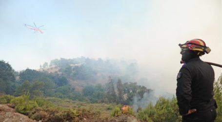 Υψηλός κίνδυνος πυρκαγιάς τη Δευτέρα σε Πήλιο – Σποράδες [χάρτης]