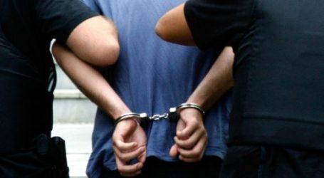 Τρεις απελάσεις Αλβανών που διέμεναν παράνομα στο Πήλιο