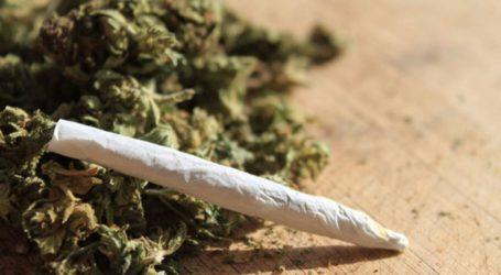 Συνελήφθη 61χρονος με τσιγαριλίκι κάνναβης στον Βόλο