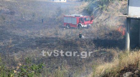Φωτιά στο 7ο χλμ Λαμίας-Δομοκού