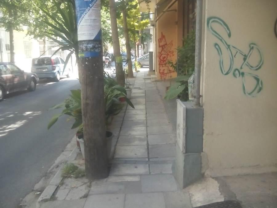 Λάρισα: Τους πείραξαν οι γλάστρες του Φιλοζωικού Συλλόγου στο πεζοδρόμιο – Το «STOP από την Δημοτική Αστυνομία (φωτο)