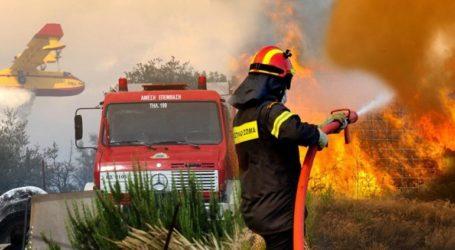 Σε ετοιμότητα οι υπηρεσίες της Μαγνησίας και αύριο για το ενδεχόμενο πυρκαγιάς