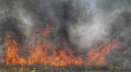Υπό μερικό έλεγχο η πυρκαγιά στον Μαραθώνα Αττικής