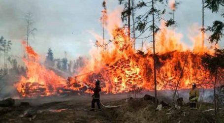 Σε ύφεση η πυρκαγιά στη Δωρίδα – Τριάντα έξι πυρκαγιές σε εικοσιτέσερις ώρες