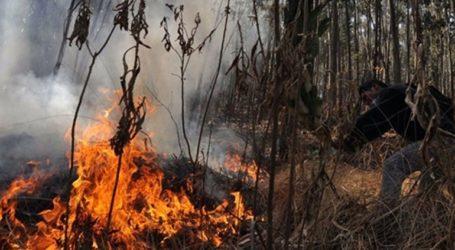 Δύο άνθρωποι έχασαν τη ζωή τους στον αγώνα με τις φλόγες στη Βολιβία