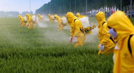 Η Γερμανία απαγορεύει το ζιζανιοκτόνο «γλυφοσάτη», διότι «πιθανότατα προκαλεί καρκίνο»