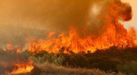 Πυρκαγιά στη Νέα Μάκρη