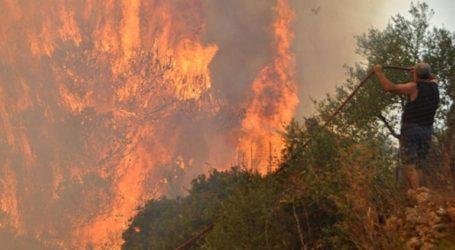Σε εξέλιξη μεγάλη πυρκαγιά στα Λαγκαδάκια Ζακύνθου