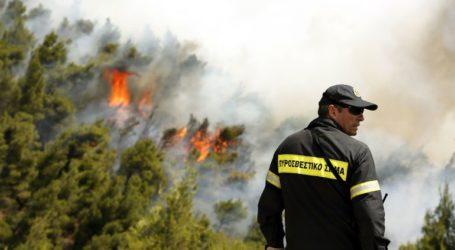 Υψηλός ο κίνδυνος εκδήλωσης πυρκαγιάς σήμερα