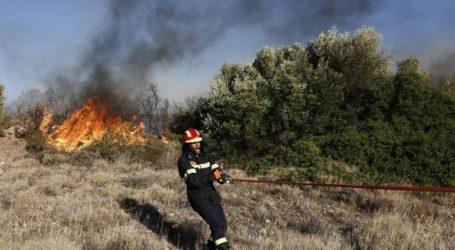 Υψηλός κίνδυνος πυρκαγιάς σήμερα – Δείτε τις περιοχές