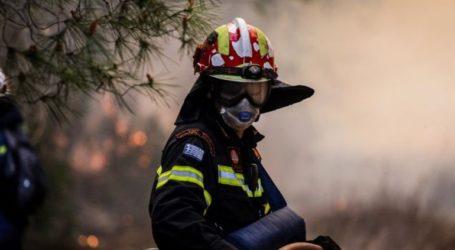 Σε εξέλιξη δασική πυρκαγιά στην περιοχή Προφήτης Ηλίας