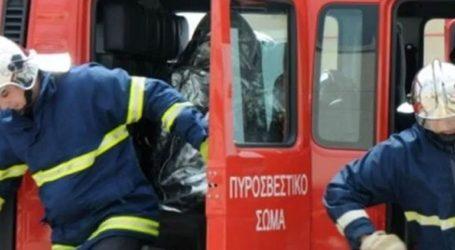 Υπό μερικό έλεγχο τέθηκε η φωτιά στην Πυλαία Θεσσαλονίκης