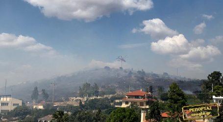 Μεγάλη φωτιά στο Λαγονήσι