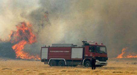 Πυρκαγιά σε υπαίθριο χώρο στο Μενίδι