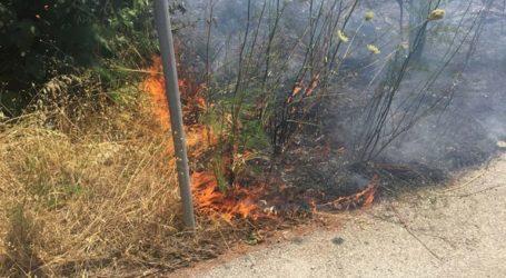 Φωτιά σε ξηρά χόρτα στη Ριζούπολη αναστάτωσε τους κατοίκους