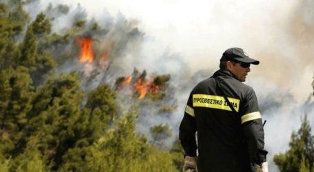 Πολύ υψηλός ο κίνδυνος πυρκαγιάς και για αύριο σε έξι περιφέρειες