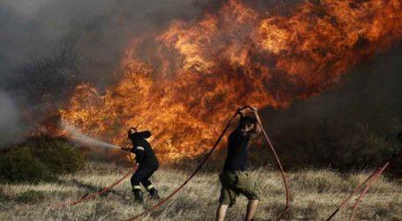 Νέα πυρκαγιά στα Μέγαρα
