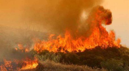 Μία σύλληψη για τη φωτιά στο Σέιχ Σου
