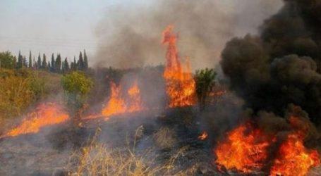 Σε εξέλιξη φωτιά στην Κέρκυρα