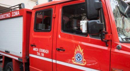 Φωτιά στην περιοχή Φλόκα της δυτικής Αχαΐας