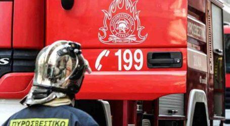 Σε ύφεση η φωτιά στην περιοχή Φλόκα της δυτικής Αχαΐας