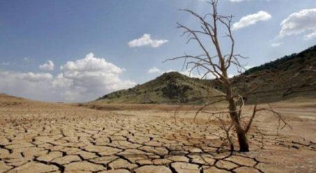 Τα 5 τελευταία χρόνια τα θερμότερα που καταγράφηκαν ποτέ