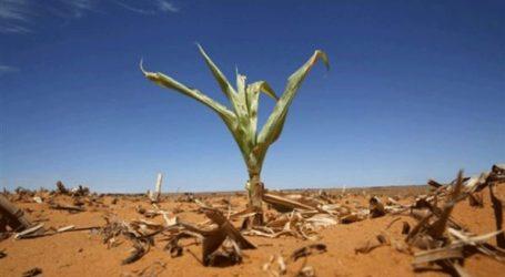 Κολοσσοί του αγροδιατροφικού τομέα συνασπιζονται για να προστατεύσουν τη βιοποικιλότητα