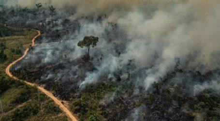 Συνελήφθησαν 63 άτομα στις επιχειρήσεις καταπολέμησης των πυρκαγιών στον Αμαζόνιο