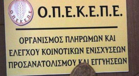 """Παρατείνεται η υποβολή των δικαιολογητικών για το """"ΚΟΜΦΟΥΖΙΟ"""""""