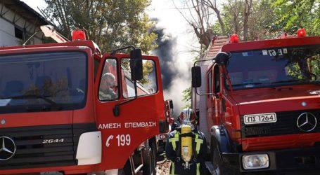 Πυρκαγιά σε δασική έκταση στην Αργολίδα