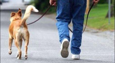 Πρόστιμο 2.400 ευρώ σε όσους δεν βγάζουν βόλτα τους σκύλους τους
