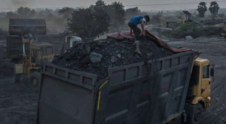 Ετήσια αύξηση 30% κατέγραψε η εισαγωγή οπτάνθρακα τον Αύγουστο
