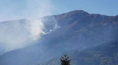 Σε εξέλιξη μεγάλη πυρκαγιά στην ορεινή Καρδίτσα