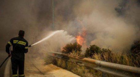 Υπό έλεγχο η φωτιά στην Καμηλόβρυση