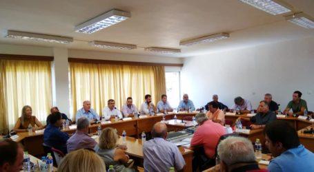 Ο Γ. Παπαδάμ νέος πρόεδρος του Δ.Σ. Ρήγα Φεραίου – Τα μέλη των Επιτροπών