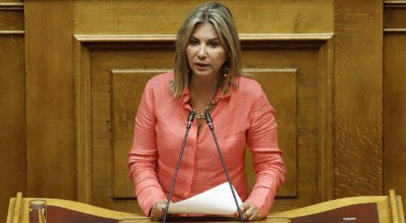 Στη Βουλή το θέμα του τραγικού δυστυχήματος στον Αλμυρό από τη Ζέττα Μακρή