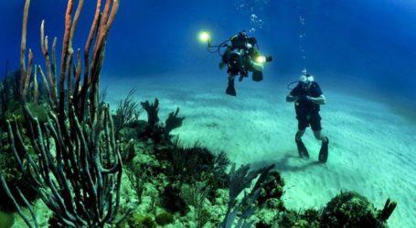 Το μεγάλο ραντεβού για το θαλάσσιο περιβάλλον στην Αλόννησο!
