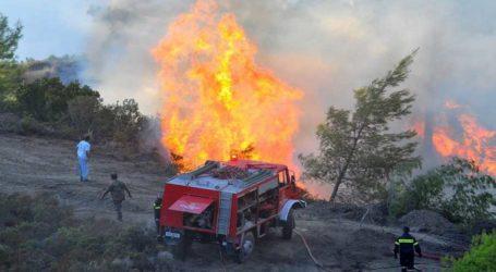 Φωτιά σε δασική έκταση στο Περίβλεπτο