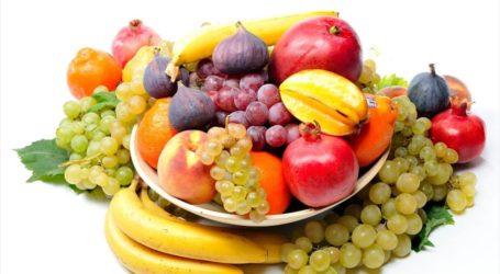 Ημερίδα για την παραγωγή φρούτων στην Πορταριά