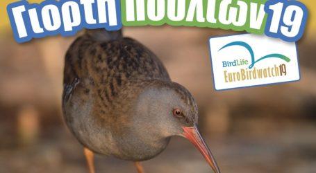 Εκδηλώσεις του Φορέα Διαχείρισης Κάρλαςγια την Ευρωπαϊκή Γιορτή των Πουλιών 2019