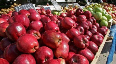 Στην ινδική αγορά τα ελληνικά μήλα